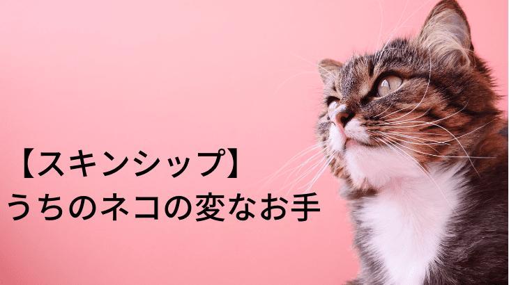 【スキンシップ】うちのネコの変な「お手」