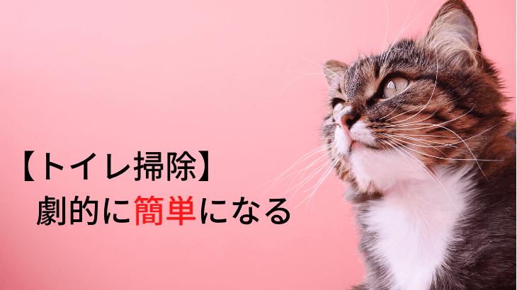 ネコのトイレ(本体)の掃除を劇的に楽にしてくれた単純な方法~ネコと6年同居しても気づかなかった~