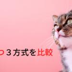 【比較】お手上げだったネコの粗相の悩みを解決した『おむつ』3方式